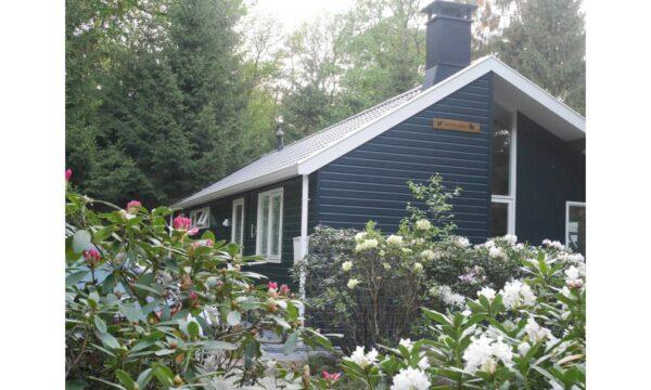 Natuurhuisje in Norg 56907 - Nederland - Drenthe - 4 personen