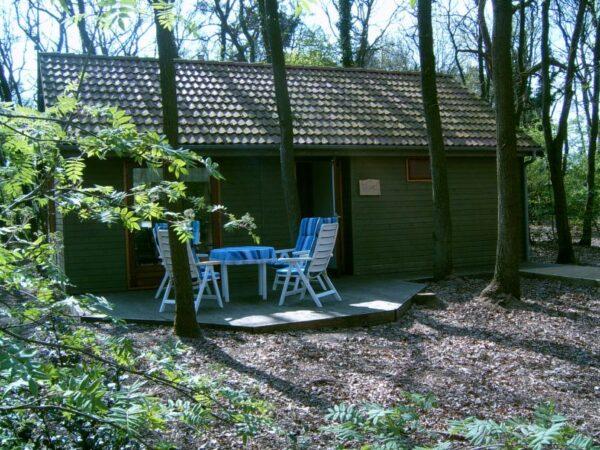 Natuurhuisje in Marienberg 26001 - Nederland - Overijssel - 4 personen