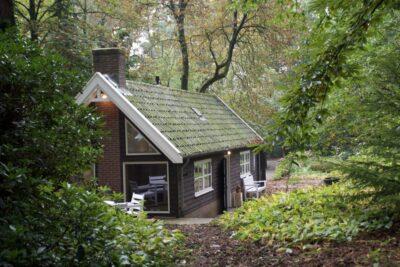 Natuurhuisje in Bosch en duin 30912 - Nederland - Utrecht - 2 personen