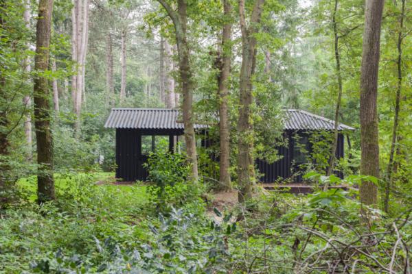 Natuurhuisje in Oudemirdum 30936 - Nederland - Friesland - 5 personen