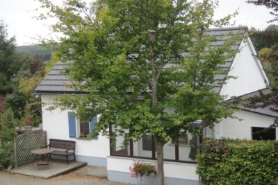 Natuurhuisje in Amel 23030 - België - Luik - 4 personen