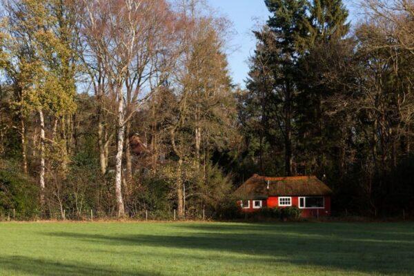 Natuurhuisje in Joppe 30966 - Nederland - Gelderland - 2 personen