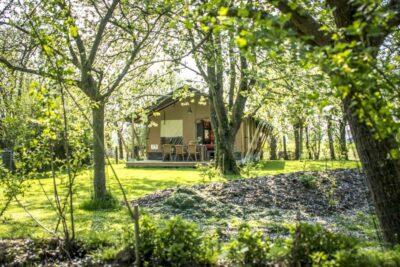 Natuurhuisje in Graauw 36631 - Nederland - Zeeland - 6 personen