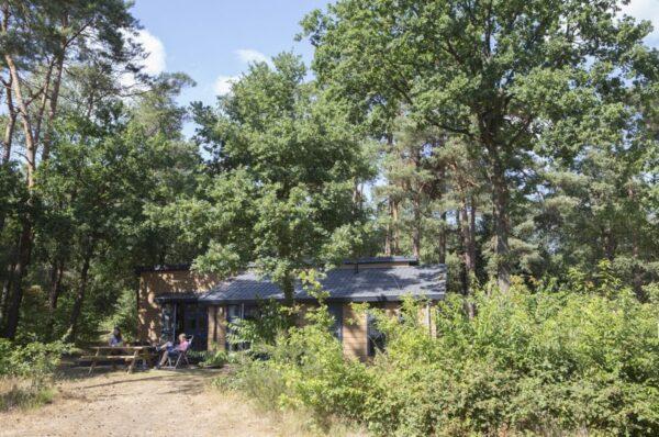 Natuurhuisje in Lemele 33110 - Nederland - Overijssel - 6 personen