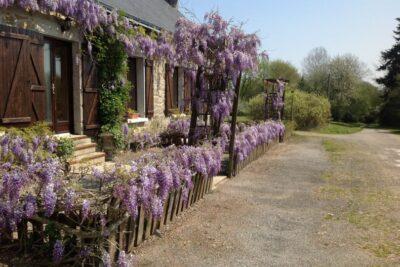 Natuurhuisje in Lignol 40376 - Frankrijk - Bretagne - 6 personen