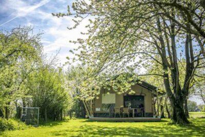 Natuurhuisje in Graauw 34022 - Nederland - Zeeland - 6 personen