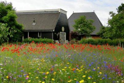 Overig DG185 - Nederland - Drenthe - 5 personen afbeelding