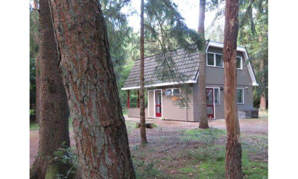 Natuurhuisje in Norg 52654 - Nederland - Drenthe - 6 personen